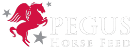 Pegus Horsefeed – Horsefeed that performs