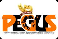 logo_pegus_home (1)