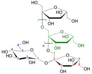 fruktanmolekyl