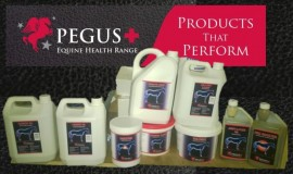 Equine Health Supplements
